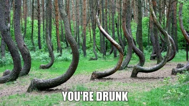 https://i0.wp.com/keithlovesmovies.com/wp-content/uploads/2016/08/drunk-forest.jpg?resize=640%2C360&ssl=1