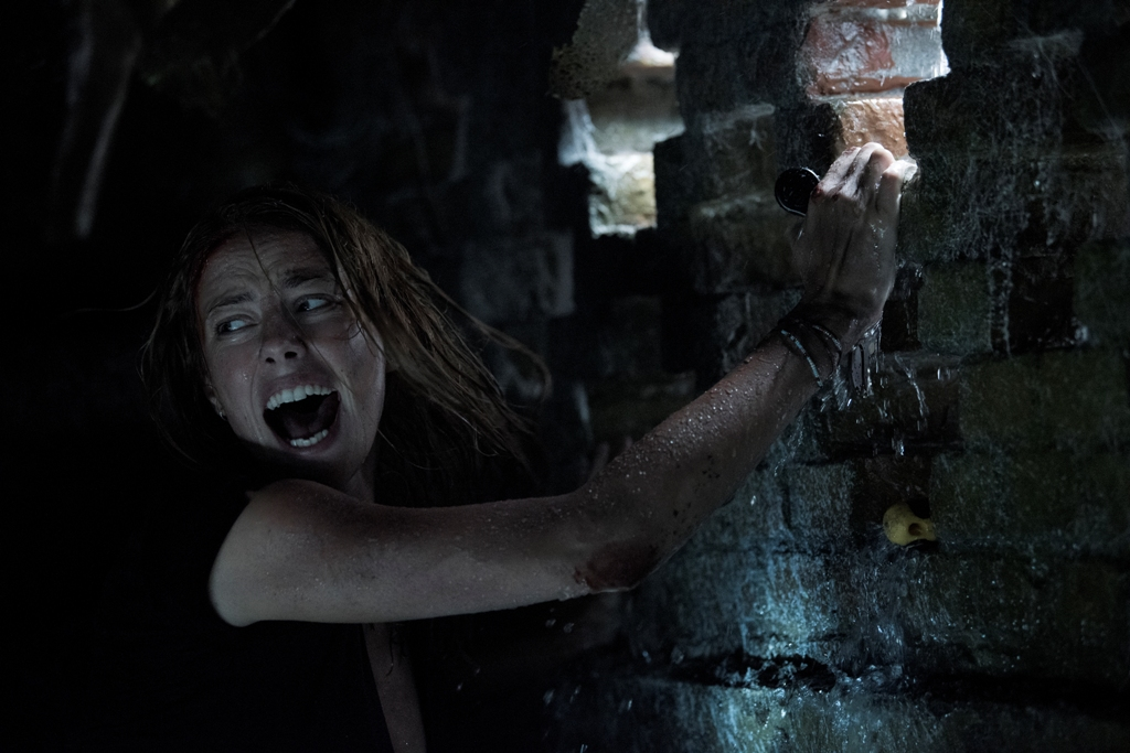Crawl – A Decent Creature Feature