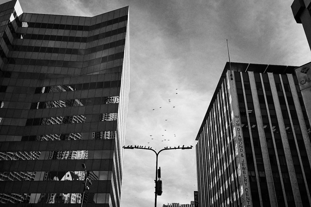 LA street photography
