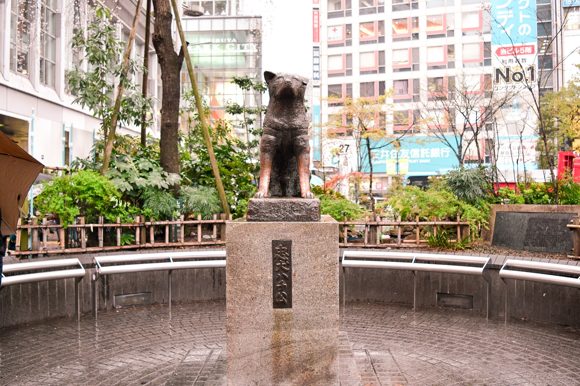 The infamous Hachiko statue. It's the first time I've seen this spot empty.