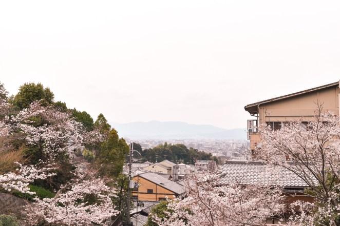 Nice view from Kiyomizu-dera