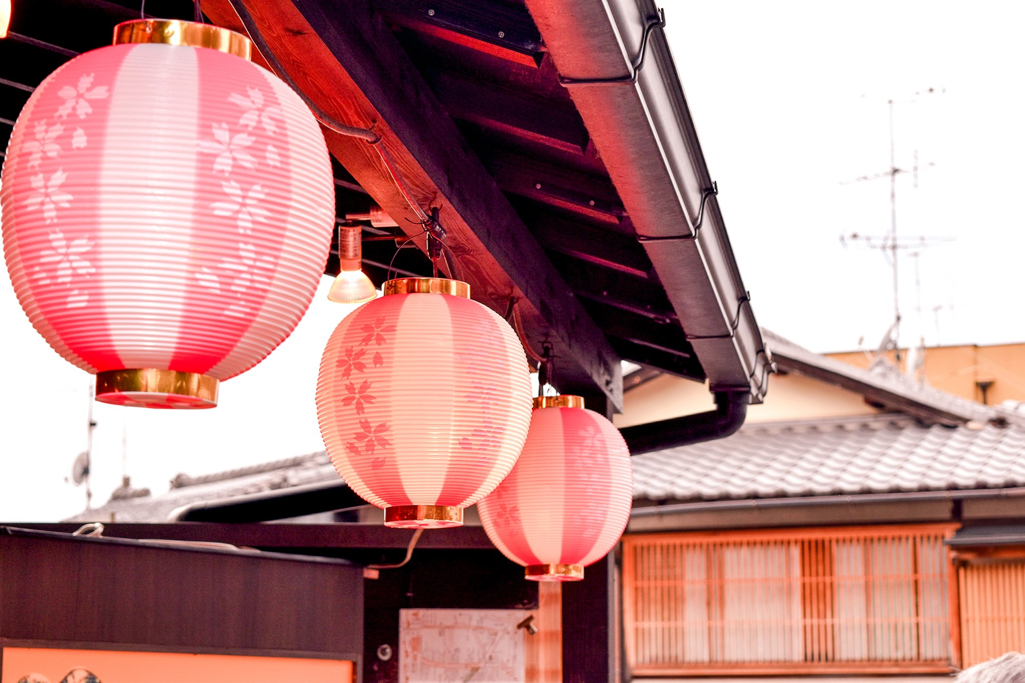 Lanterns adorned with sakura