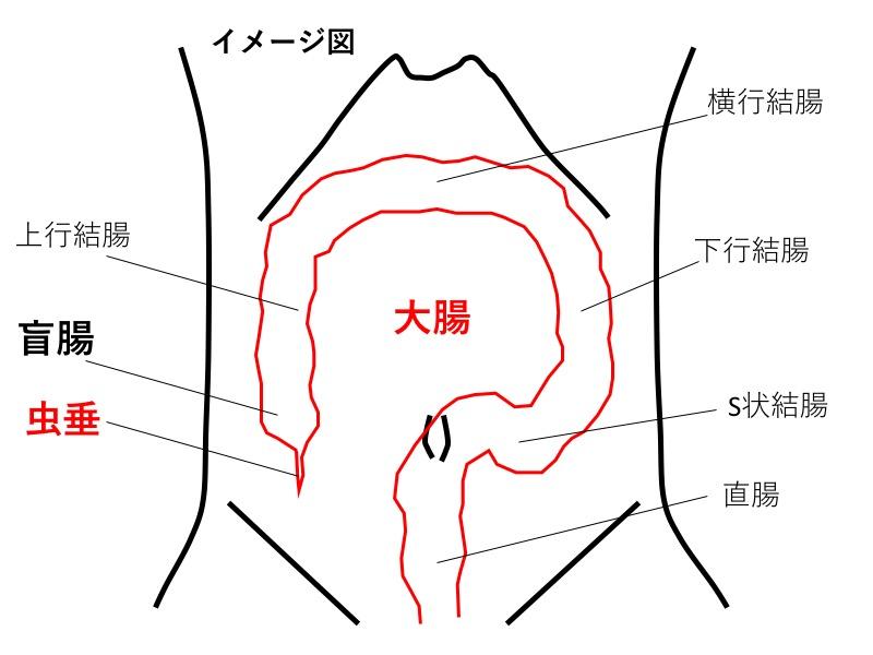 appendix-location