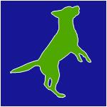 Keizer Feerwerd - Active icon