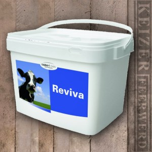 Reviva - Keizer Feerwerd