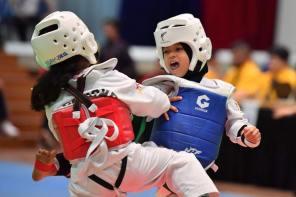 Belajar Taekwondo | Kenali Seni Mempertahankan Diri Taekwondo – Apa Itu Taekwondo?