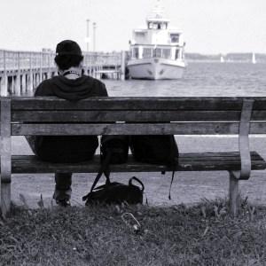 bench-401881_1920