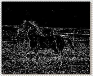 lukisan kuda 10