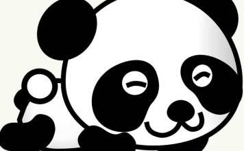 vektor panda