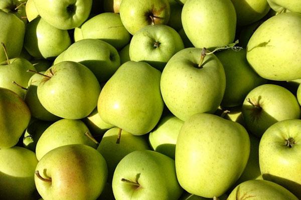 apple_pomme_golden_delivery_lebanon