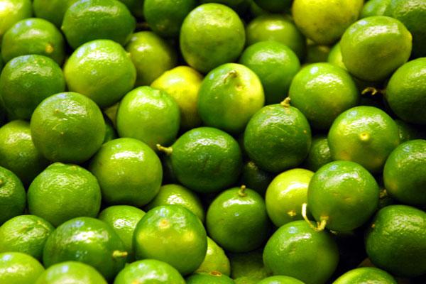 lime_citron_vert_delivery_lebanon