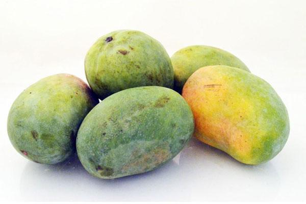 mangue_mango_delivery_lebanon