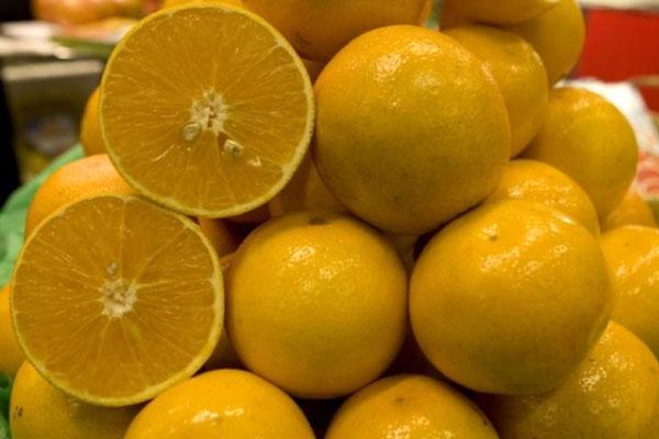 pamplemousse_grape_fruit_delivery_lebanon