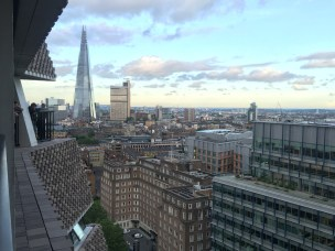 Looking Southeast from the 10th floor of the Switch House at The New Tate Modern, London. Photo credit Kelise Franclemont.