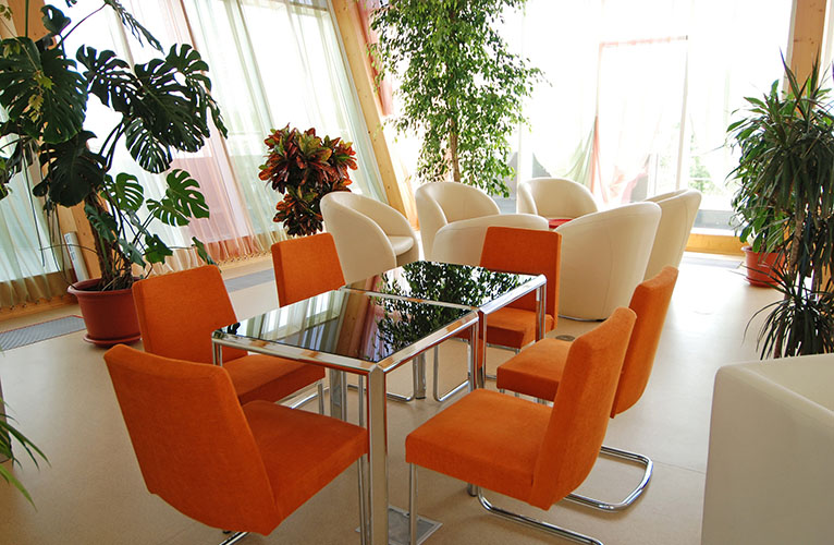 Interior Plantscapes Residential Living Room With Plants   Kelley Green Interior  Plantscapes