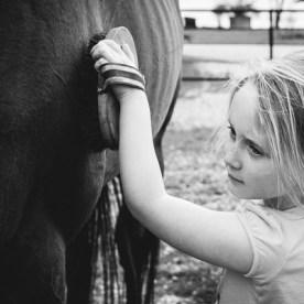 Girl brushing horse | Kelley K Photography