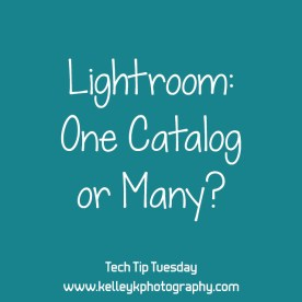 lightroom-one-catalog-or-many-KelleyK-tech-tip