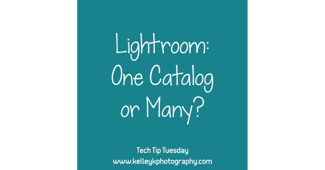 Tech Tip: One Lightroom Catalog or Many?