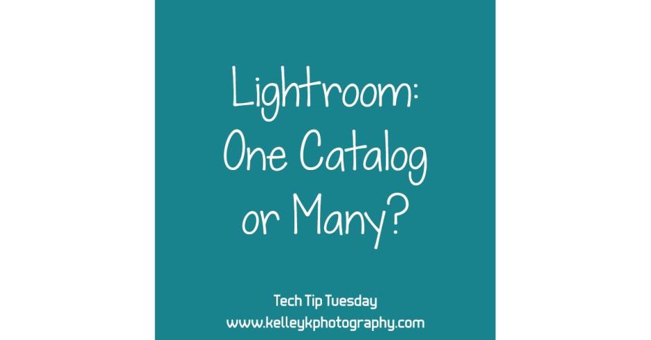 lightroom-one-catalog-or-many-KelleyK-tech-tip