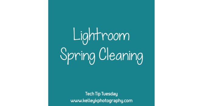 Tech Tip: Lightroom Spring Cleaning