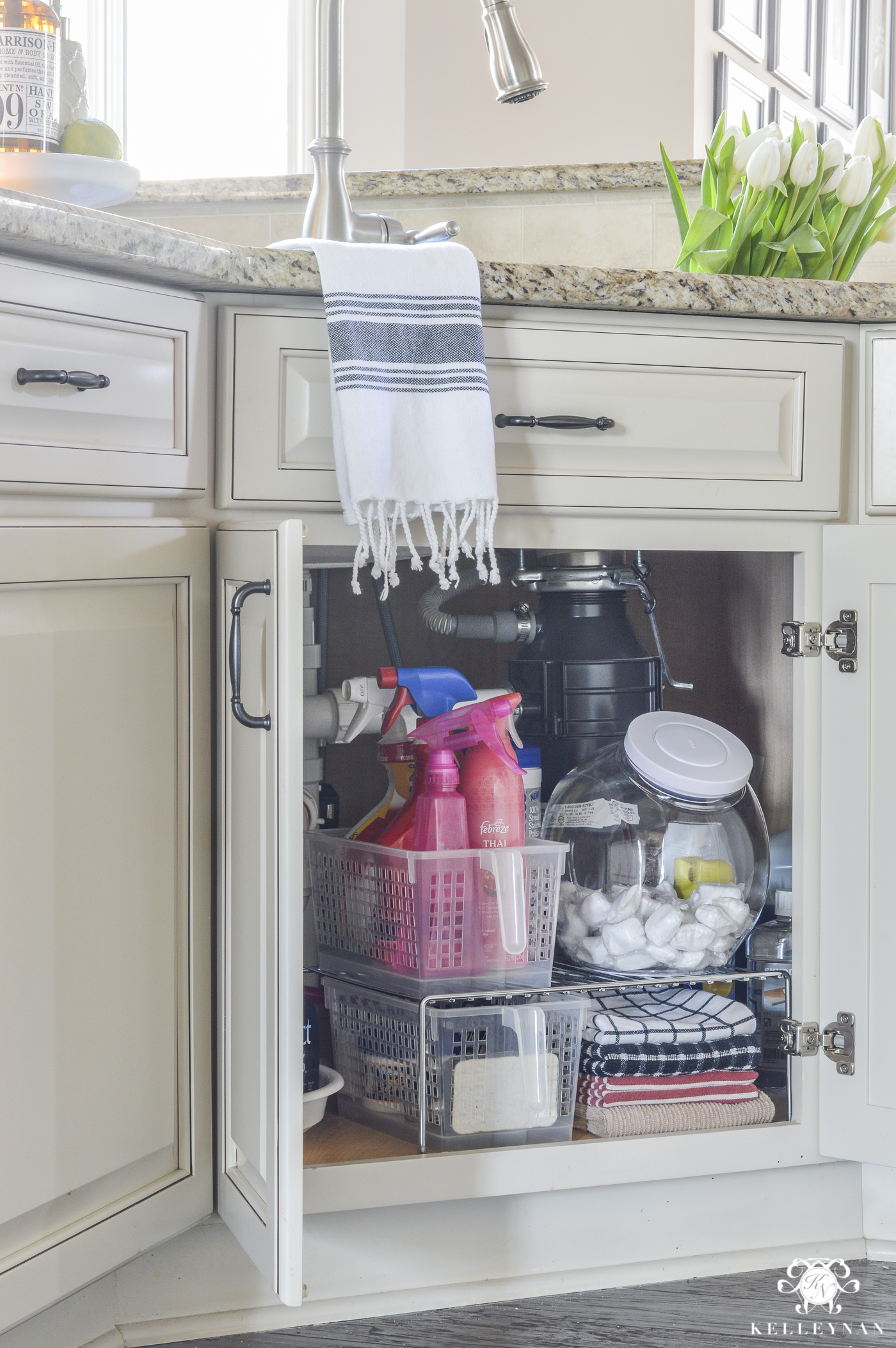 Organization for Under the Kitchen Sink  Kelley Nan