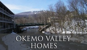 Okemo Valley Homes in Vermont