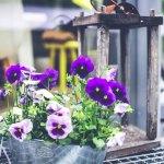home improvement summer checklist