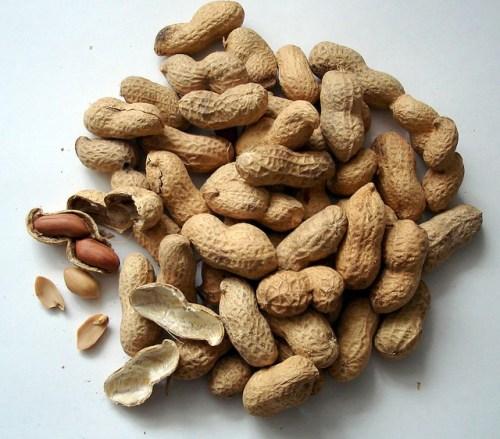 peanuts-1112_640
