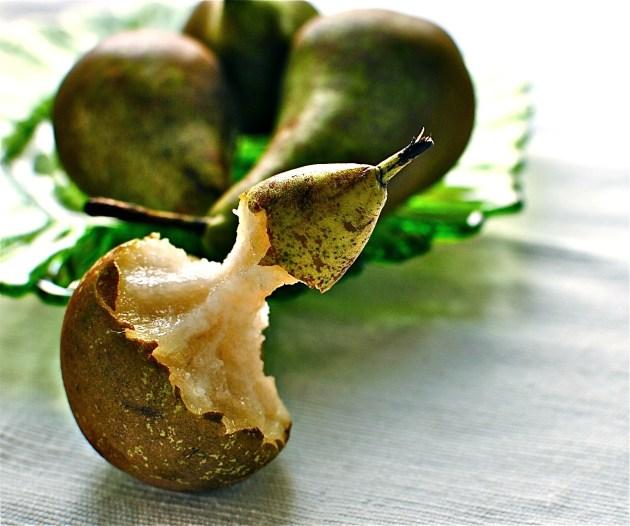 pear image