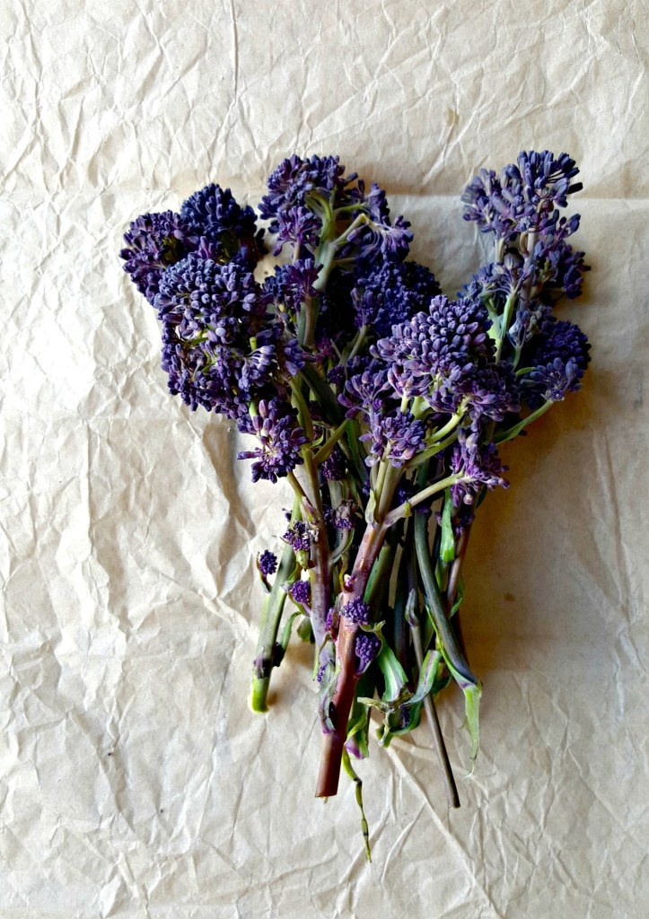 purple sprouting broccoli // food to glow