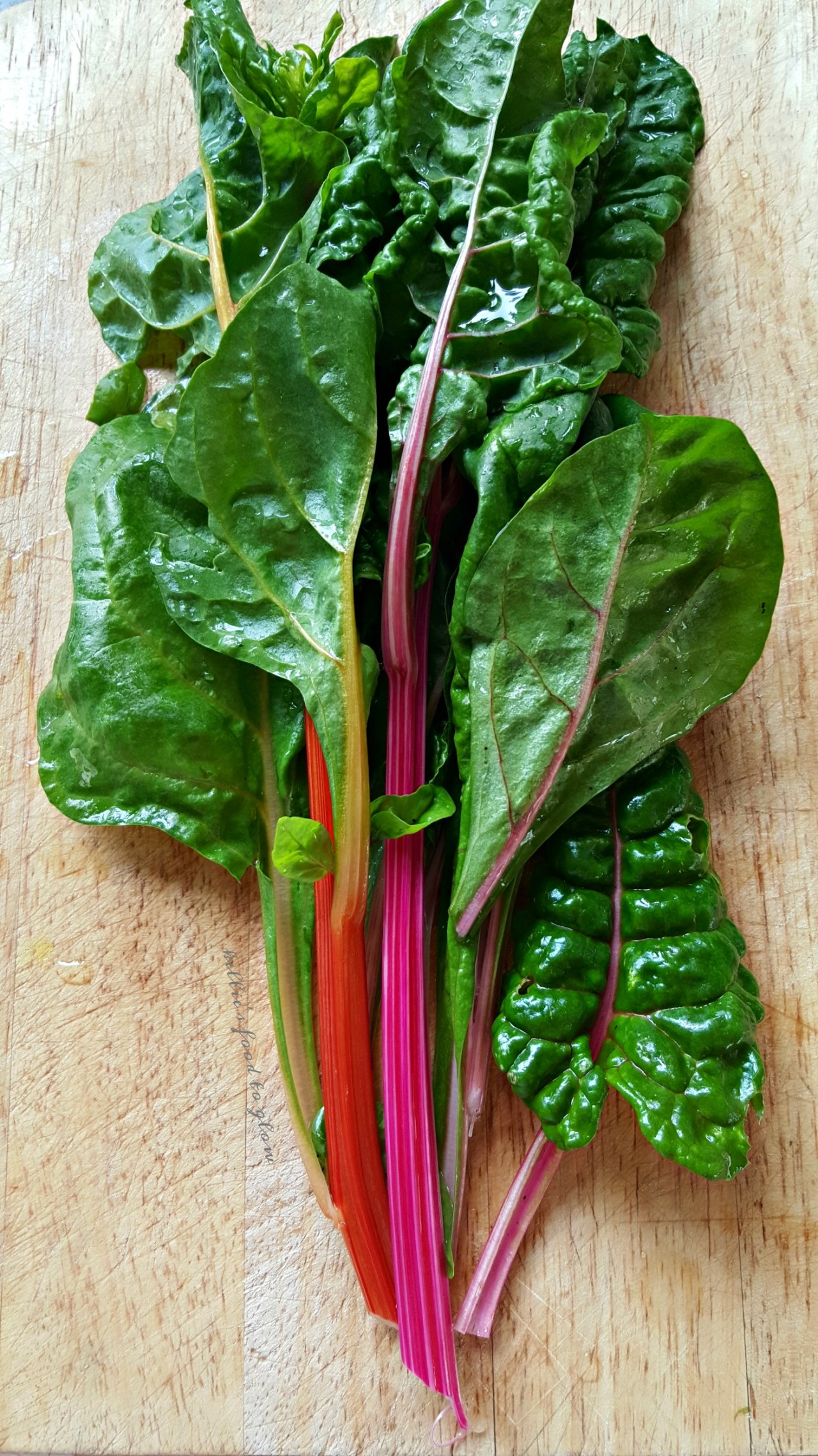 scottish garden chard - kelliesfoodtoglow.com