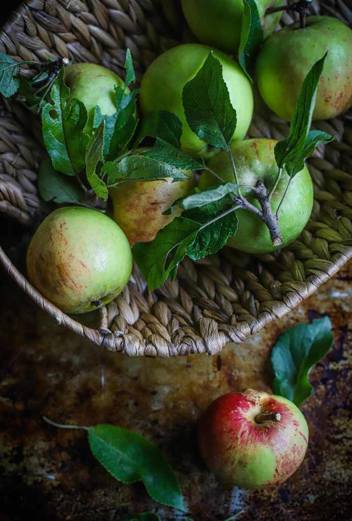 garden apples in a basket. Dark mood.