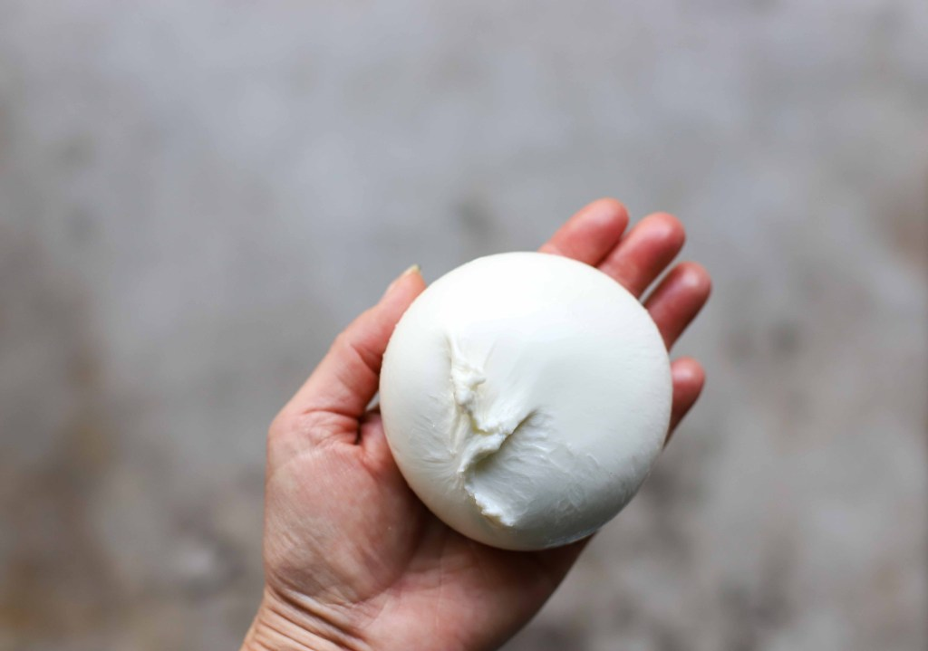 holding a ball of Italian burrata cheese