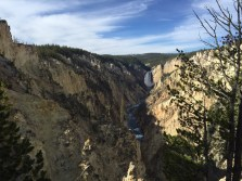 Lower falls - Yellowstone National Park
