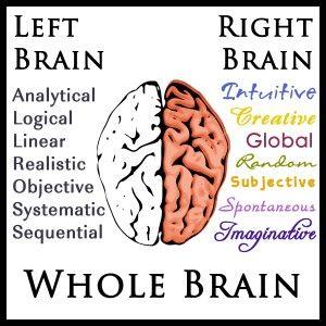 Left-Right-Whole Brain