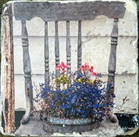 Vintage Chair with Flowers Coaster