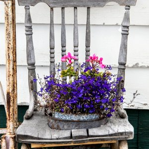 Chair with Flowers b Kelly Cushing Photography