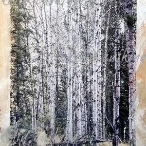 Birch Tree Wall Decor by Kelly Cushing