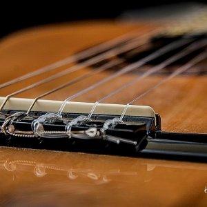 Guitar Bridge on Black by Kelly Cushing