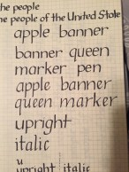 Again, I liked comparing the upright to the italics side by side.