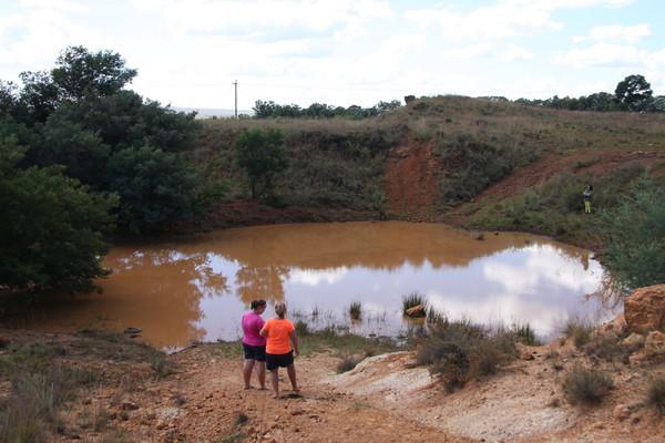 Inspecting the waterhole