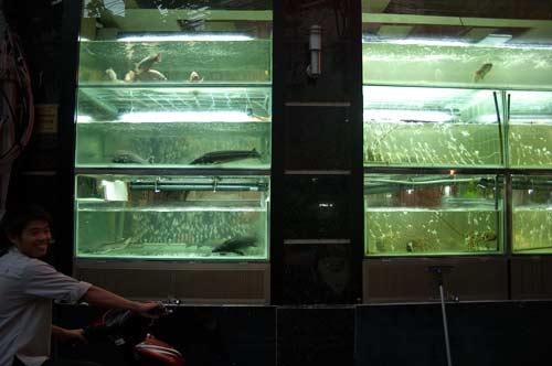 Front of fish restaurant