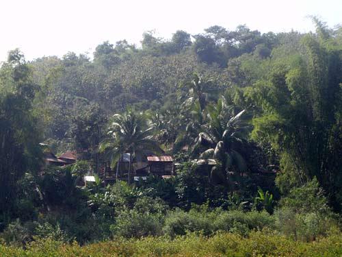 village on Nam Pa River, Laos