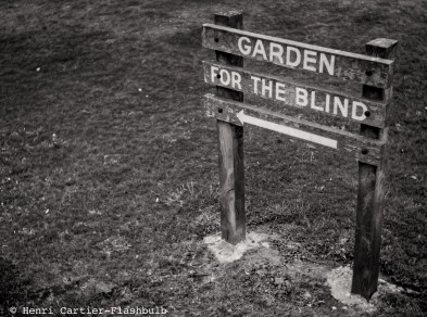 garden-for-the-blind1