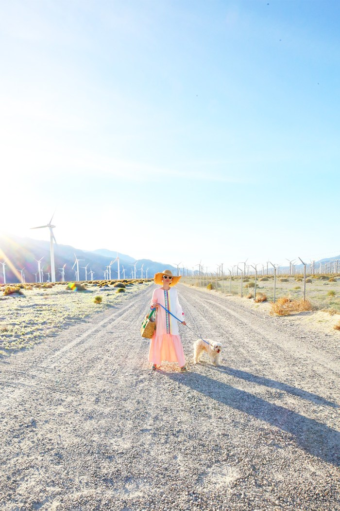 Best Photoshoot Locations in Palm Springs | Kelly Golightly