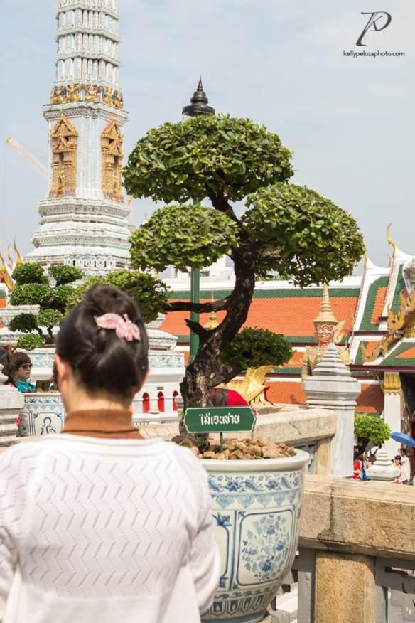 bangkok-2016-5