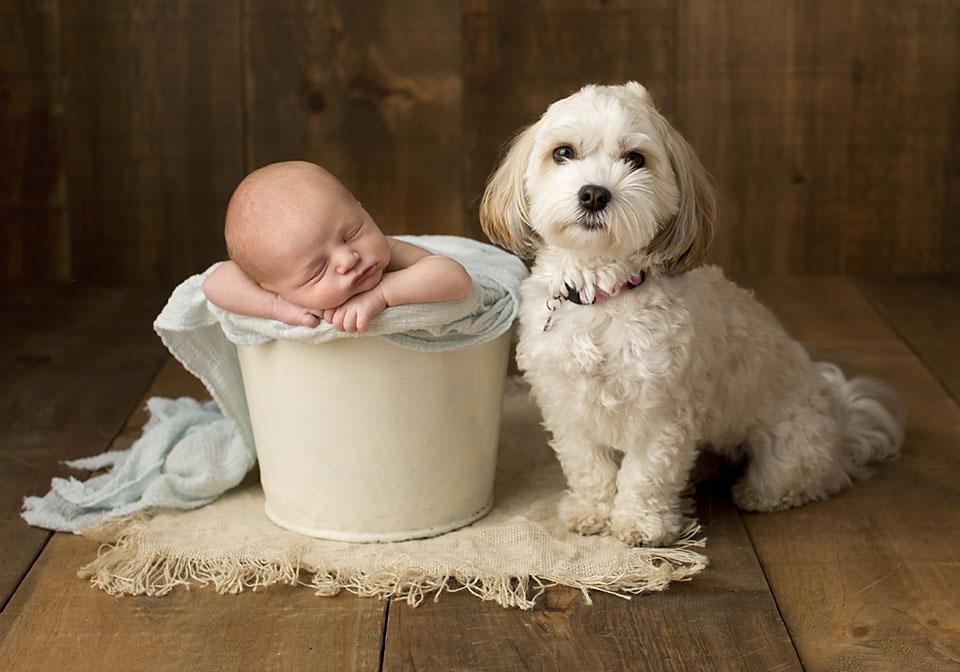 Find Newborn Photography in Newmarket Ontario
