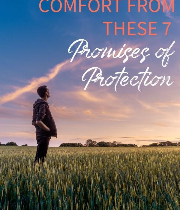 Receive Comfort from These 7 Promises of Protection
