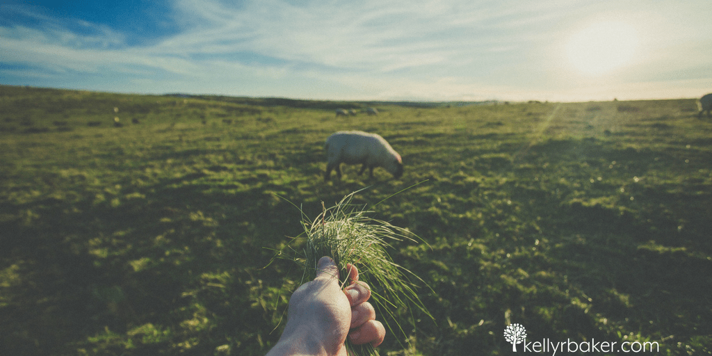 "Jesus told us in John 10 that He is our Good Shepherd. It's more than a depiction, He said ""I AM,"" as in it's an existing promise. In this post, you will see 27 ways your Good Shepherd guarantees you're thriving. May any doubt of it be dispelled."