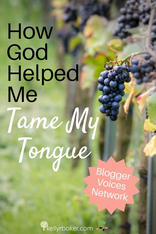 I sensed the Holy Spirit's conviction about my mouth—but hadn't done anything about it. I guess you could say my heart was fallow in this area. #BloggerVoicesNetwork #BVNetworkParty #ThrivingInChrist #blogger #wisdom #spiritualgrowth #Christian #blog #tongue #cursing #fallowground